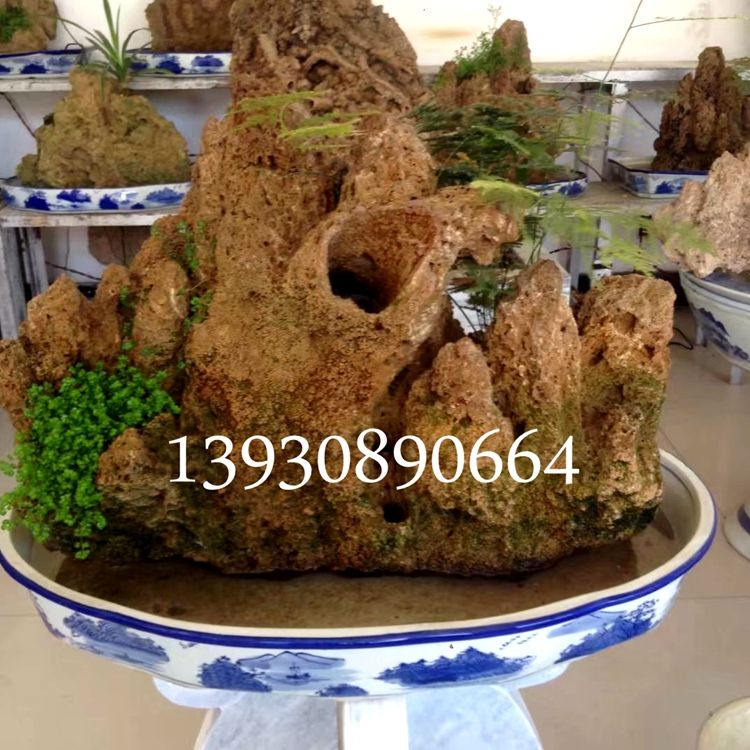 上水石盆景图片 吸水石假山植物盆景制作出售