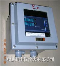 防爆儀表箱 BXK, BJXT 系列