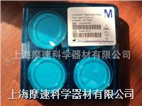 JVWP04700 MERCK MILLIPORE PTFE 0.1微米孔徑過濾膜