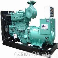 赛瓦特/康明斯220S柴油发电机组