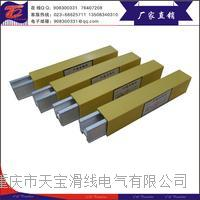 H型单极铝滑触线