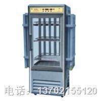 LRH-400-G光照培养箱 LRH-400-G