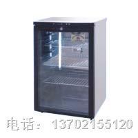 FYX-100B种子发芽箱 FYX-100