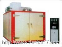 非标准工业干燥箱/烤箱 非标