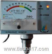 ZB-UVM2B型一体化紫外线强度监测仪 ZB-UVM2B