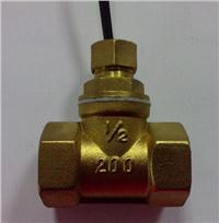 水流开关 FS-DN15T