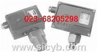 重慶川儀DYKY壓力控制器 DYKY-102,DYKY-103,DYKY-204,DYKY-205,DYKY-306,DYKY-