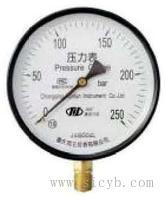 壓力表 Y-60,Y-60TQ,Y-60TZ,Y-60ZT,Y-100,Y-100T,YTF-100,YTF