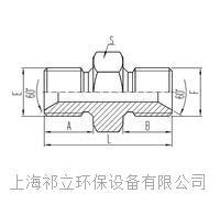 两端英制外螺纹60°内锥面密封或组合垫密封 1B