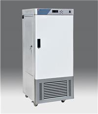 RGX人工氣候箱 RGX-250E
