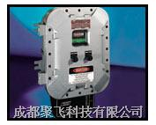 2020 氢分析仪 Teledyne 2020