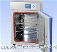 电热恒温培养箱 DNP-9052(303-1)