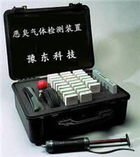 便携式恶臭气体快速检测箱 YD17G YD-17G