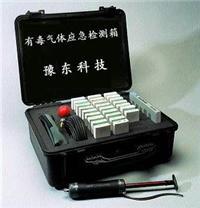 便携式矿井/坑道有毒气体应急检测箱 YD9G YD-9G