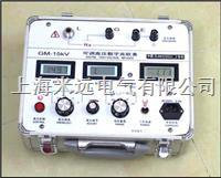 高压变电站兆欧表  GM-5kV