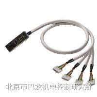 GEFANUC 90-30 / RX3I   PAC-GF30-2X10-V0-3M5  1511520035 GEFANUC 90-30 / RX3I   PAC-GF30-2X10-V0-3M5  15115