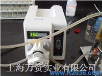 BT600-2J兰格蠕动泵上海代理