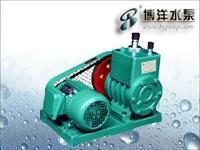 JW型柱塞计量泵/2X型旋片式真空泵/上海水泵厂021-51611355 2X
