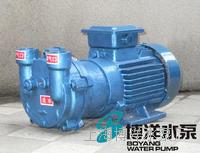 上海真空泵 水环式真空泵 旋片式真空泵 2BV系列真空泵  2BV系列