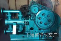 上海WBR15-15型电动高温往复泵 电动往复泵 耐高温往复泵  WBR系列