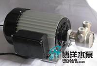 BGY系列高压水泵,不锈钢高压旋转叶片泵 叶片泵 旋转泵  BGY系列