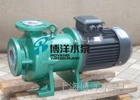 CQB-65-125型衬氟磁力泵 耐腐蚀化工磁力泵 无堵塞磁力泵 CQB型