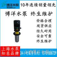 上海市CDLK浸入式多级离心泵 浸入式多级离心泵 CDLK型