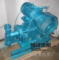 WB2-60型山东泰安造纸厂耐高温计量往复泵 环保专用工博牌耐高温往复泵 WB2-60型