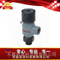 彈簧微啟封閉式高壓安全閥 A41Y-160320