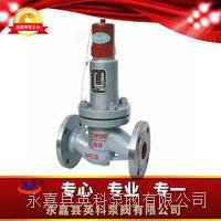 平行式安全回流閥 AHN42F-P18