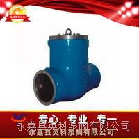水壓試驗閥 BIP6BW