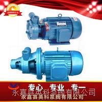 單級漩渦泵 1W型