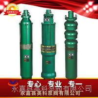 QS型系列潛水電泵 QS型