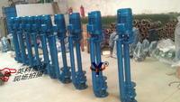 液下式排污泵