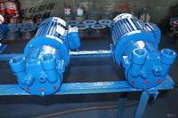 SK型直聯式水環式真空泵