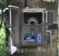 4G物联网云存储GPS定位无线红外夜视自动监测相机SY-999M