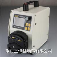 BT-300CA系列蠕动泵