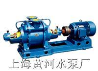 SZ型水环式真空泵-水环式真空泵厂 SZ型