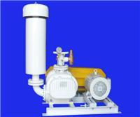 亚游罗茨真空泵 RSV-100