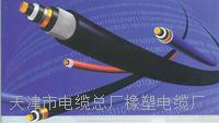 阻燃型ZR-MHYVRP 2*2*7/0.37生产厂家_福建电线电缆