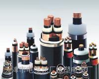 HYA53-10对铠装通信电缆_产品展示_MHYVRP矿用通信电缆_ZA