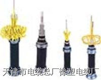 HYA 通 信 电 缆
