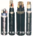 铜芯、铝芯聚氯乙烯绝缘聚氯乙烯护套电力电缆  VV22电缆ZRVV电缆