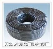 耐火电缆耐火电缆-聚氯乙烯绝缘耐火布电缆  NH-BV 电缆