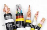 供应铁路信号缆PTY22PTY23