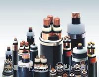 国标MCPMCP电缆 畅销MCPMCP电缆资料 价