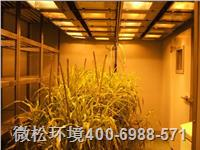 顶置光型人工气候室
