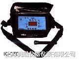 溴甲烷检测仪 IQ-350 IQ-350