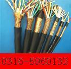 DJYPVPR电子计算机用电缆DJYVPR