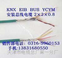 DJYP2VR电缆性能指标 DJYP2VR电缆性能指标